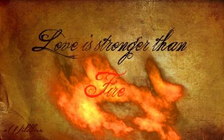 wildfire graphic