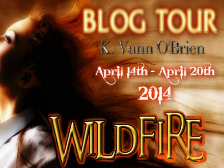 WILDFIRE TOUR BANNER
